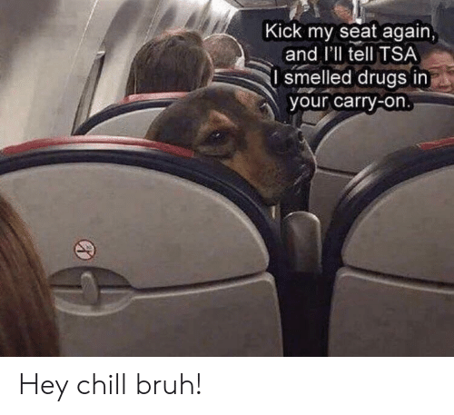 kick: Kick my seat again,  and I'll tell TSA  I smelled drugs in  your carry-on. Hey chill bruh!