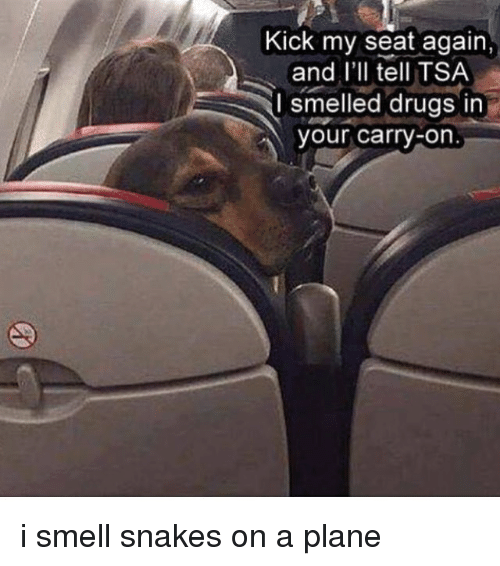 Kick My Seat Again And I Ll Tell Tsa L Smelled Drugs In Your Carry On I Smell Snakes On A Plane