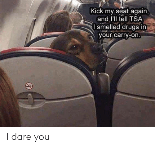 tsa: Kick my seat again  and I'll tell TSA  smelled drugs in  your carry-on I dare you