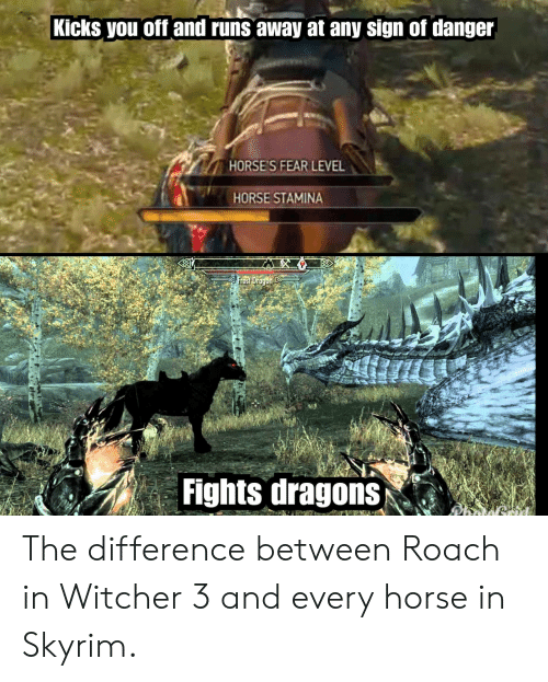 Runs Away: Kicks you off and runs away at any sign of danger  HORSE'S FEAR LEVEL  HORSE STAMINA  Fights dragons The difference between Roach in Witcher 3 and every horse in Skyrim.