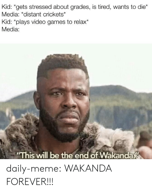crickets: Kid: *gets stressed about grades, is tired, wants to die*  Media: *distant crickets*  Kid: *plays video games to relax*  Media:  This will be the end of Wakanda daily-meme:  WAKANDA FOREVER!!!