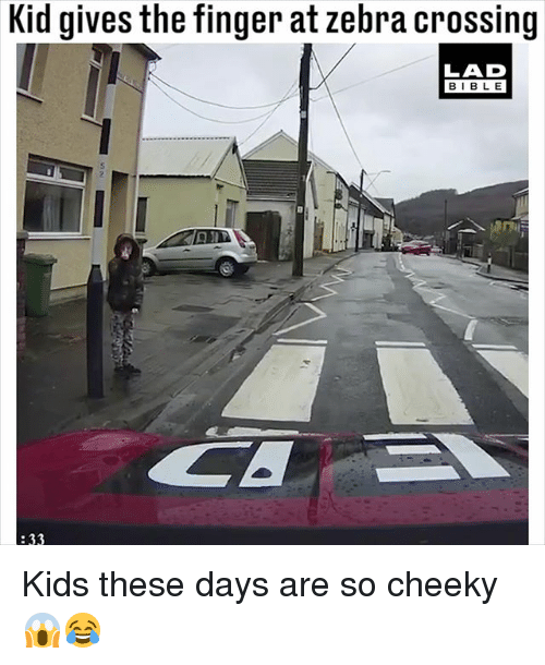 zebra crossing: Kid gives the finger at zebra crossing  LAD  BIBLE  :33 Kids these days are so cheeky 😱😂