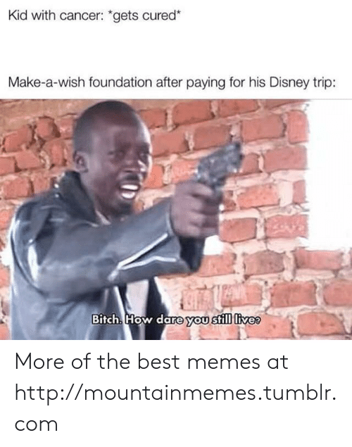 """foundation: Kid with cancer: """"gets cured*  Make-a-wish foundation after paying for his Disney trip:  Bitch. How dare you still livee More of the best memes at http://mountainmemes.tumblr.com"""