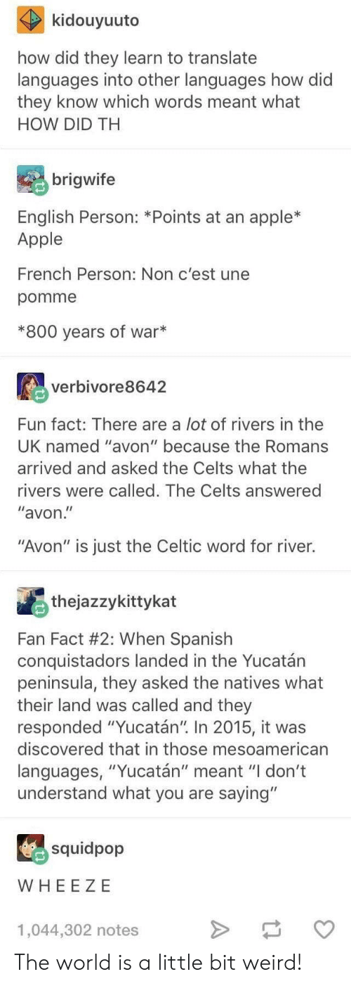 "Celtic: kidouyuuto  how did they learn to translate  languages into other languages how did  they know which words meant what  HOW DID TH  brigwife  English Person: *Points at an apple*  Apple  French Person: Non c'est une  pomme  *800 years of war*  verbivore8642  Fun fact: There are a lot of rivers in thee  UK named ""avon"" because the Romans  arrived and asked the Celts what the  rivers were called. The Celts answered  ""avon  ""Avon"" is just the Celtic word for river.  thejazzykittykat  Fan Fact #2: When Spanish  conquistadors landed in the Yucatán  peninsula, they asked the natives what  their land was called and they  responded ""Yucatán"" In 2015, it was  discovered that in those mesoamerican  languages, ""Yucatán"" meant ""I don't  understand what you are saying""  squidpop  WHEE ZE  1,044,302 notes The world is a little bit weird!"