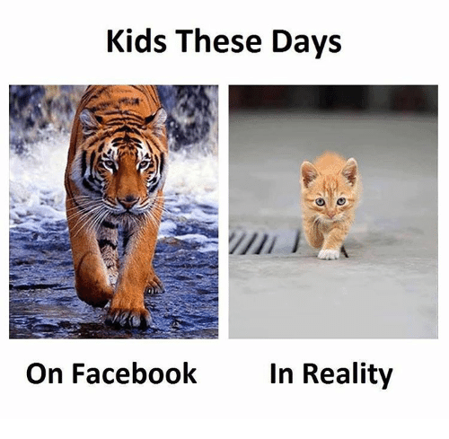 Kid These Days: Kids These Days  On Facebook  In Reality