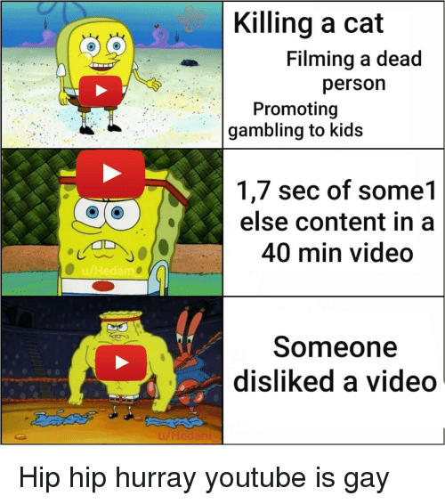 A 40: Killing a cat  Filming a dead  persorn  Promoting  gambling to kids  u/Hedam  1,7 sec of some1  else content in a  40 min video  u/Hedamo  Someone  disliked a video  LHedam Hip hip hurray youtube is gay