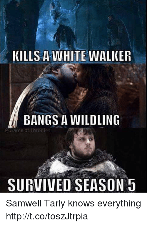 Samwell Tarly: KILLS A WHITE WALKER  BANGS A WILDLING  @Game ofThronies  SURVIVED SEASON 5 Samwell Tarly knows everything http://t.co/toszJtrpia