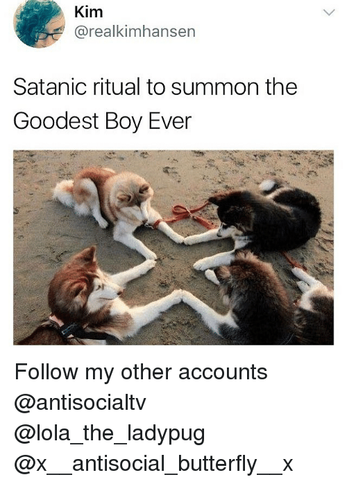 Summone: Kim  @realkimhansen  Satanic ritual to summon the  Goodest Boy Ever Follow my other accounts @antisocialtv @lola_the_ladypug @x__antisocial_butterfly__x
