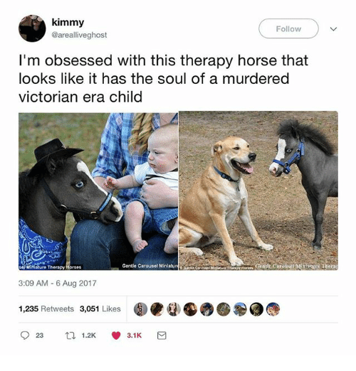 Horses, Memes, and Horse: kimmy  @arealliveghost  Follow  I'm obsessed with this therapy horse that  looks like it has the soul of a murdered  victorian era child  ce Mihiature Therapy Horses  Gentle Carousel Minlatur  ore Centle Carousel Minntrr Thera  3:09 AM - 6 Aug 2017  1,235 Retweets 3,051 LikesO  923 1.2KV 3.1 K
