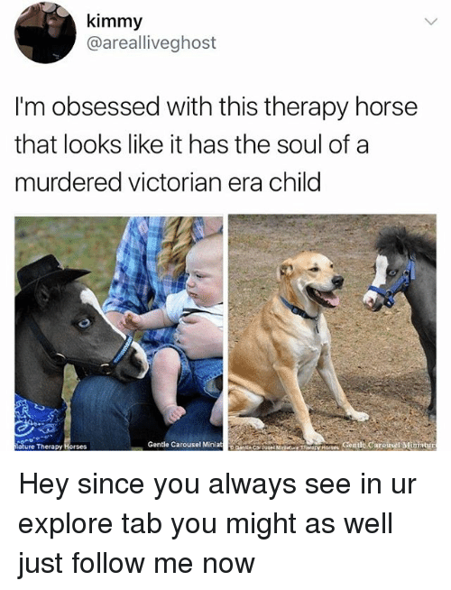 Horses, Memes, and Horse: kimmy  @arealliveghost  I'm obsessed with this therapy horse  that looks like it has the soul of a  murdered victorian era child  ertionutnity'T  Gentle Caroinet Ministr  ature Therapy Horses  Gentle Carousel Miniat Hey since you always see in ur explore tab you might as well just follow me now