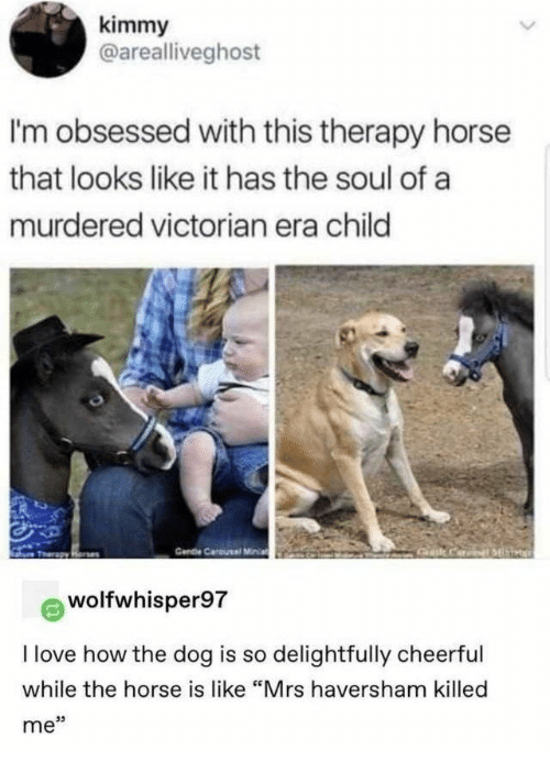"""gat: kimmy  @arealliveghost  I'm obsessed with this therapy horse  that looks like it has the soul of a  murdered victorian era child  Cendie Carousel Miia  Gat CariML  Tharapy Rone  wolfwhisper97  I love how the dog is so delightfully cheerful  while the horse is like """"Mrs haversham killed  me"""""""