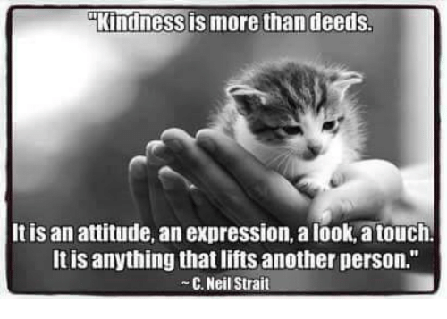 """Memes, Express, and Attitude: Kindness is more than deeds  It is an attitude, an expression, a look,atouch.  It is anything that lifts another person.""""  C. Neil Strait"""