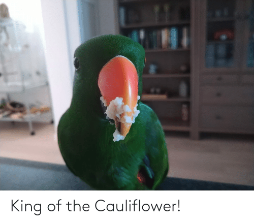 King Of: King of the Cauliflower!