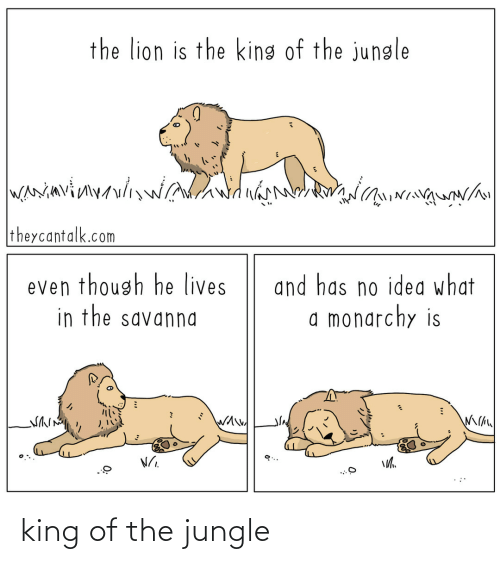 King Of: king of the jungle
