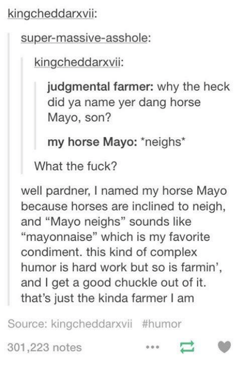 """Dank, 🤖, and Super: kingcheddarxvii:  super-massive-asshole  kingcheddarxvii:  judgmental farmer: why the heck  did ya name yer dang horse  Mayo, son?  my horse Mayo  neighs  What the fuck?  well pardner, l named my horse Mayo  because horses are inclined to neigh,  and """"Mayo neighs"""" sounds like  """"mayonnaise"""" which is my favorite  condiment. this kind of complex  humor is hard work but so is farmin'  and get a good chuckle out of it.  that's just the kinda farmer l am  Source: kingcheddarxvii #humor  301,223 notes"""