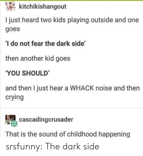The Dark Side: kitchikishangout  I just heard two kids playing outside and one  goes  do not fear the dark side'  then another kid goes  'YOU SHOULD  and then I just hear a WHACK noise and then  crying  cascadingcrusader  That is the sound of childhood happening srsfunny:  The dark side