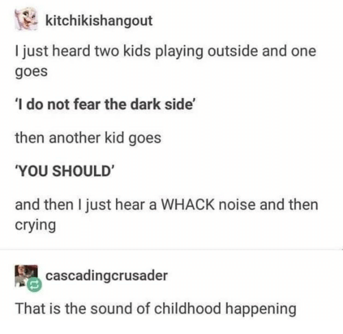 The Dark Side: kitchikishangout  I just heard two kids playing outside and one  goes  I do not fear the dark side'  then another kid goes  YOU SHOULD'  and then I just hear a WHACK noise and then  crying  cascadingcrusader  That is the sound of childhood happening