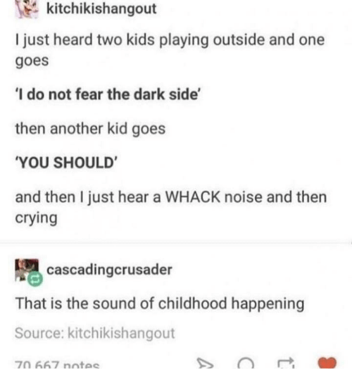 The Dark Side: kitchikishangout  I just heard two kids playing outside and one  goes  'I do not fear the dark side'  then another kid goes  'YOU SHOULD'  and then I just hear a WHACK noise and then  crying  cascadingcrusader  That is the sound of childhood happening  Source: kitchikishangout  70 667 notes  A