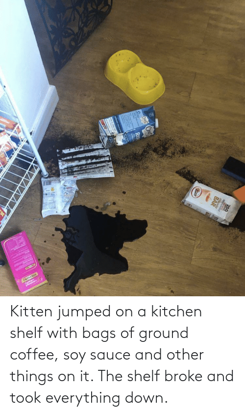 bags: Kitten jumped on a kitchen shelf with bags of ground coffee, soy sauce and other things on it. The shelf broke and took everything down.