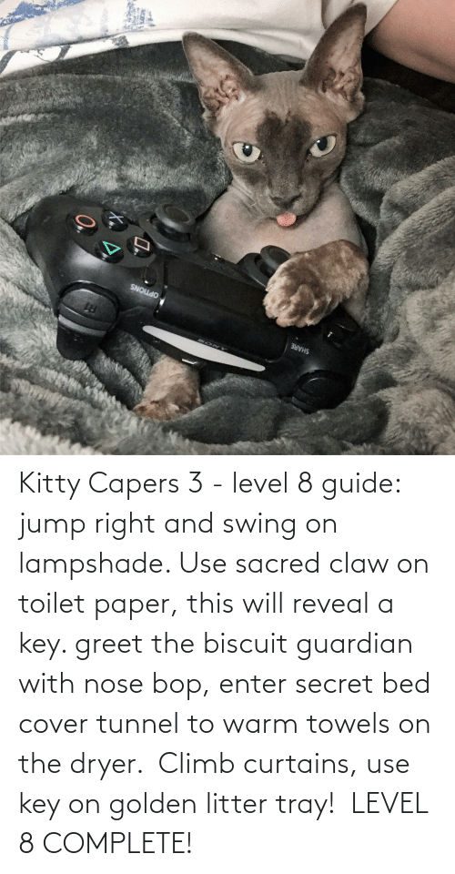 Curtains: Kitty Capers 3 - level 8 guide: jump right and swing on lampshade. Use sacred claw on toilet paper, this will reveal a key. greet the biscuit guardian with nose bop, enter secret bed cover tunnel to warm towels on the dryer.  Climb curtains, use key on golden litter tray!  LEVEL 8 COMPLETE! 
