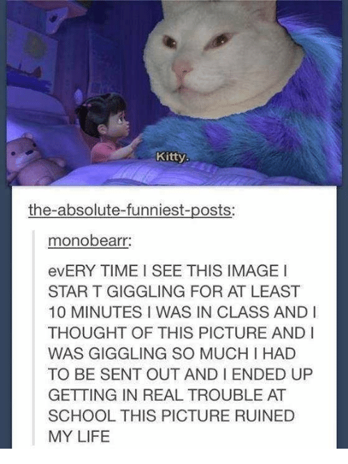 Life, School, and Image: Kitty.  the-absolute-funniest-posts:  monobearr  evERY TIME I SEE THIS IMAGE I  STAR T GIGGLING FOR AT LEAST  10 MINUTES I WAS IN CLASS AND I  THOUGHT OF THIS PICTURE ANDI  WAS GIGGLING SO MUCH I HAD  TO BE SENT OUT AND I ENDED UP  GETTING IN REAL TROUBLE AT  SCHOOL THIS PICTURE RUINED  MY LIFE