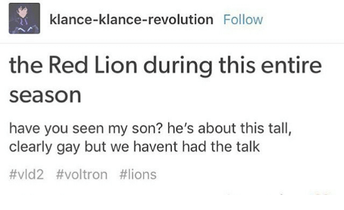 Memes, Lion, and Lions: klance-klance-revolution Follow  the Red Lion during this entire  Season  have you seen my son? he's about this tall,  clearly gay but we havent had the talk  #vld2 voltron