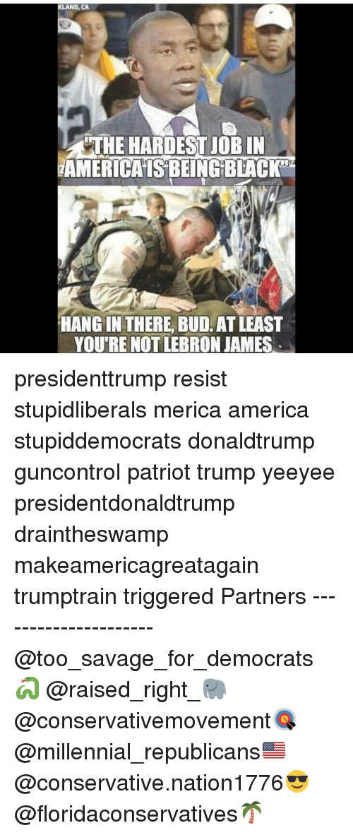 America, LeBron James, and Memes: KLAND, CA  THE HARDEST JOB IN  AMERICAISBEING BEACK  To  HANG IN THERE, BUD. AT LEAST  YOU'RE NOT LEBRON JAMES presidenttrump resist stupidliberals merica america stupiddemocrats donaldtrump guncontrol patriot trump yeeyee presidentdonaldtrump draintheswamp makeamericagreatagain trumptrain triggered Partners --------------------- @too_savage_for_democrats🐍 @raised_right_🐘 @conservativemovement🎯 @millennial_republicans🇺🇸 @conservative.nation1776😎 @floridaconservatives🌴