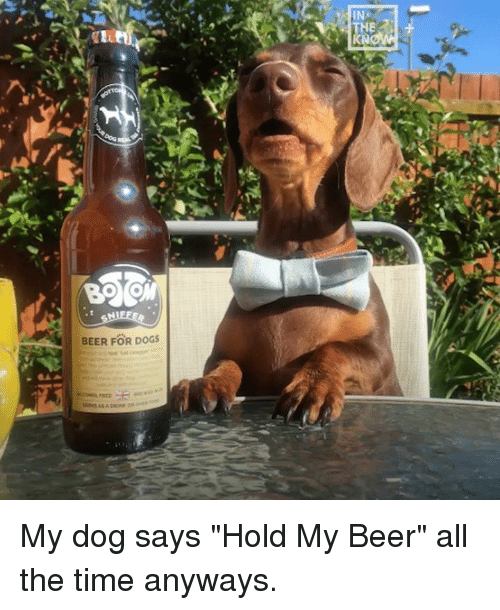 "Beer, Dank, and Dogs: KN  BEER FOR DOGS My dog says ""Hold My Beer"" all the time anyways."