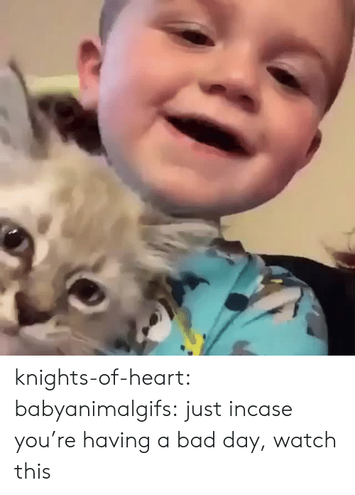knights: knights-of-heart:  babyanimalgifs: just incase you're having a bad day, watch this