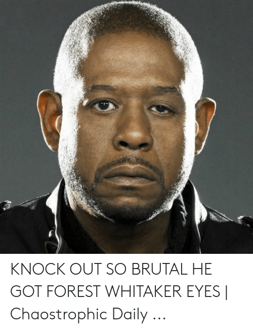 Forest Whitaker Eyes: KNOCK OUT SO BRUTAL HE GOT FOREST WHITAKER EYES | Chaostrophic Daily ...