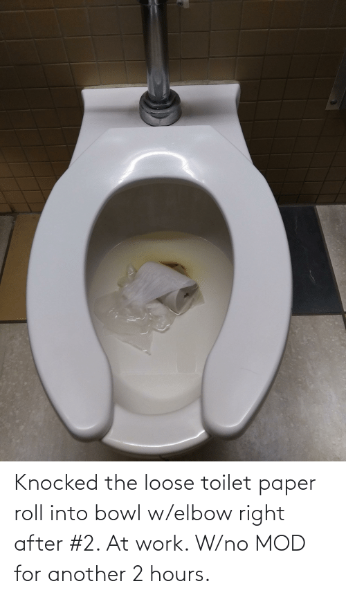 toilet-paper-roll: Knocked the loose toilet paper roll into bowl w/elbow right after #2. At work. W/no MOD for another 2 hours.