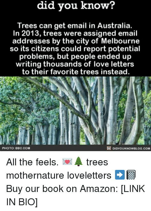 All The Feels: know?  did you know?  Trees can get email in Australia.  In 2013, trees were assigned email  addresses by the city of Melbourne  so its citizens could report potential  problems, but people ended up  writing thousands of love letters  to their favorite trees instead.  PHOTO: BBC. COM  DIDYOUKNOWBLOG.COM All the feels. 💌🌲 trees mothernature loveletters ➡️📓 Buy our book on Amazon: [LINK IN BIO]