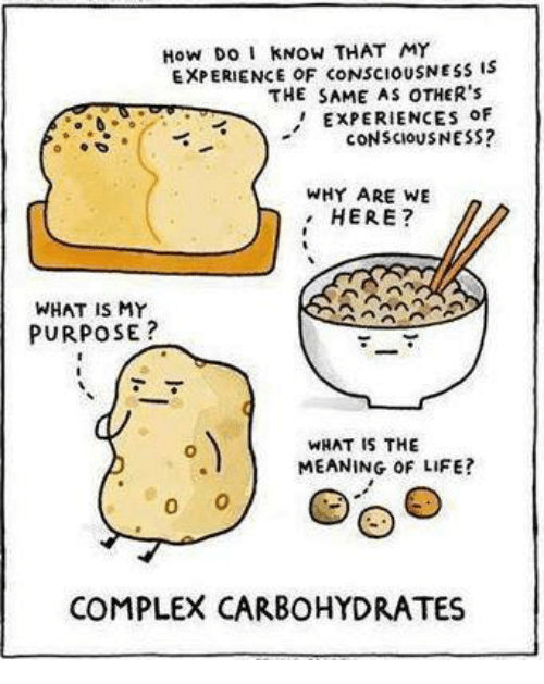 memes: kNow THAT MY  EXPERIENCE OF CONSCIOUSNESS IS  THE SAME AS OTHER's  ExPERIENCES OF  CONSCIOUSNESS?  WHY ARE WE  HERE?  WHAT IS MY  PURPOSE  WHAT IS THE  MEANING OF LIFE?  0  COMPLEX CARBOHYDRATES