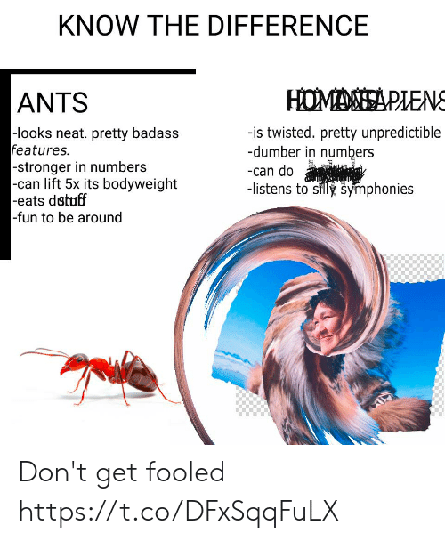 Ants: KNOW THE DIFFERENCE  HOMASA PLENS  ANTS  -looks neat. pretty badass  features.  -stronger in numbers  |-can lift 5x its bodyweight  -eats dstuff  -fun to be around  -is twisted. pretty unpredictible  -dumber in numbers  -can do  -listens to silly symphonies Don't get fooled https://t.co/DFxSqqFuLX