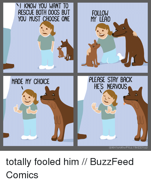 Choose One, Memes, and Buzzfeed: KNOW YOU WANT TO  RESCUE BOTH DOGS BUT  YOU MUST CHOOSE ONE  MADE MY CHOICE  FOLLOW  MY LEAD  PLEASE STAY BACK  HE'S NERVOUS  NATHAN WPYLE BUZZFEED totally fooled him // BuzzFeed Comics
