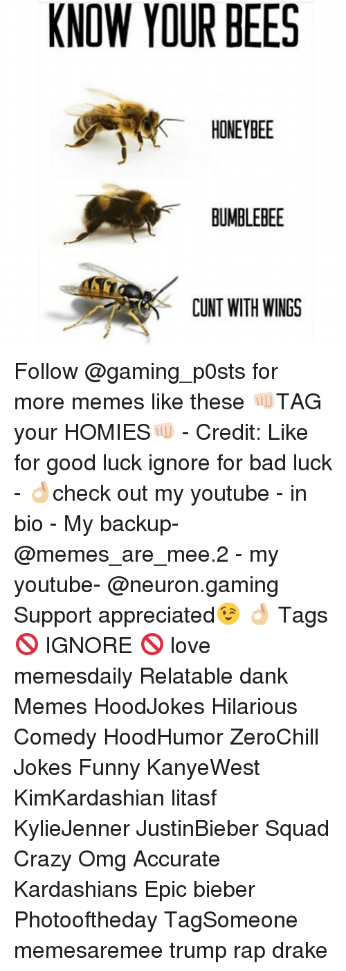 Dankly: KNOW YOUR BEES  HONEYBEE  BUMBLEBEE  CUNT WITH WINGS Follow @gaming_p0sts for more memes like these 👊🏻TAG your HOMIES👊🏻 - Credit: Like for good luck ignore for bad luck - 👌🏼check out my youtube - in bio - My backup- @memes_are_mee.2 - my youtube- @neuron.gaming Support appreciated😉 👌🏼 Tags 🚫 IGNORE 🚫 love memesdaily Relatable dank Memes HoodJokes Hilarious Comedy HoodHumor ZeroChill Jokes Funny KanyeWest KimKardashian litasf KylieJenner JustinBieber Squad Crazy Omg Accurate Kardashians Epic bieber Photooftheday TagSomeone memesaremee trump rap drake