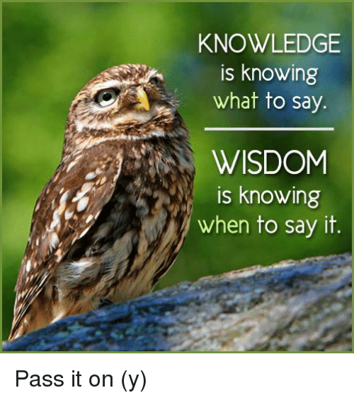 Memes, Say It, and Knowledge: KNOWLEDGE  is knowing  what to say.  WISDOM  is knowing  when to say it. Pass it on (y)