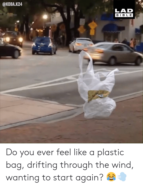 Do You Ever Feel: @KOBA.K24  LAD  BIBLE Do you ever feel like a plastic bag, drifting through the wind, wanting to start again? 😂💨