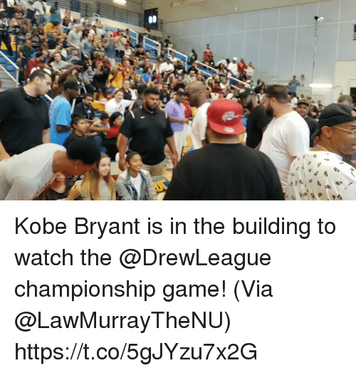 Kobe Bryant, Memes, and Game: Kobe Bryant is in the building to watch the @DrewLeague championship game!  (Via @LawMurrayTheNU)    https://t.co/5gJYzu7x2G