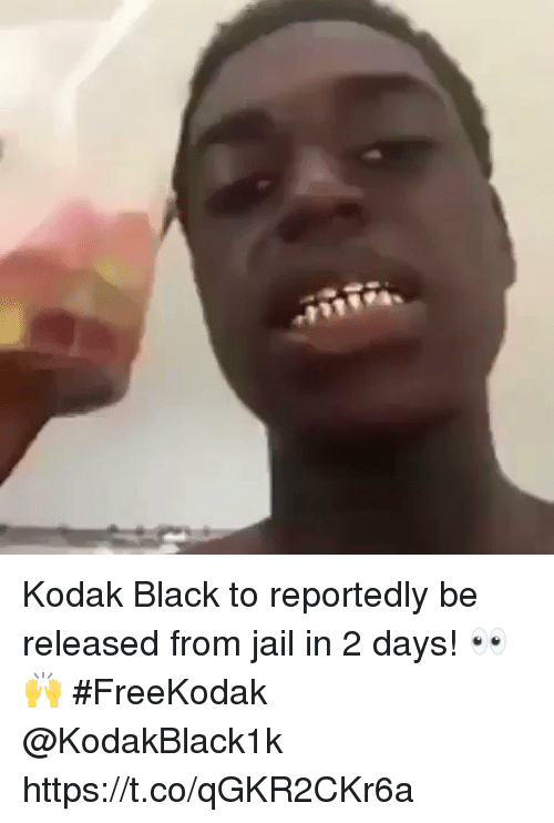 Jail, Black, and Kodak: Kodak Black to reportedly be released from jail in 2 days! 👀🙌 #FreeKodak @KodakBlack1k https://t.co/qGKR2CKr6a
