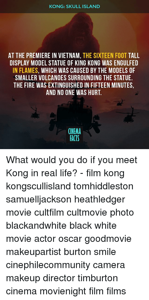 modelling: KONG: SKULL ISLAND  AT THE PREMIERE IN VIETNAM, THE SIXTEEN FOOT TALL  DISPLAY MODEL STATUE OF KING KONG WAS ENGULFED  IN FLAMES, WHICH WAS CAUSED BY THE MODELS OF  SMALLER VOLCANOES SURROUNDING THE STATUE  THE FIRE WAS EXTINGUISHED IN FIFTEEN MINUTES,  AND NO ONE WAS HURT.  CINEMA  FACTS What would you do if you meet Kong in real life? - film kong kongscullisland tomhiddleston samuelljackson heathledger movie cultfilm cultmovie photo blackandwhite black white movie actor oscar goodmovie makeupartist burton smile cinephilecommunity camera makeup director timburton cinema movienight film films