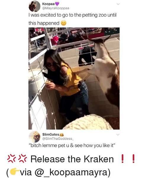 """petting zoo: Koopaa  @MayraKooppaa  l was excited to go to the petting zoo until  this happened  $limGatess  @SlimThaGoddess  """"bitch lemme pet u & see how you like it"""" 💢💢 Release the Kraken ❗️❗️ (👉via @_koopaamayra)"""