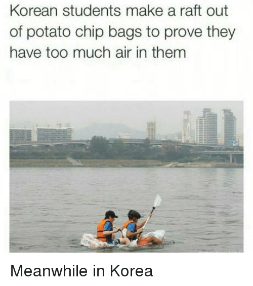 Memes, Too Much, and Potato: Korean students make a raft out  of potato chip bags to prove they  have too much air in them Meanwhile in Korea