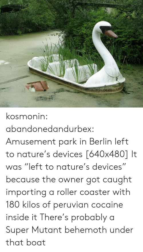 "mutant: kosmonin: abandonedandurbex:  Amusement park in Berlin left to nature's devices [640x480]  It was ""left to nature's devices"" because the owner got caught importing a roller coaster with 180 kilos of peruvian cocaine inside it   There's probably a Super Mutant behemoth under that boat"