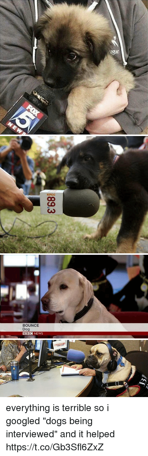 "Dogs, News, and Bbc News: KPCC   BOUNCE  Dog  BBC NEWS everything is terrible so i googled ""dogs being interviewed"" and it helped https://t.co/Gb3Sfl6ZxZ"