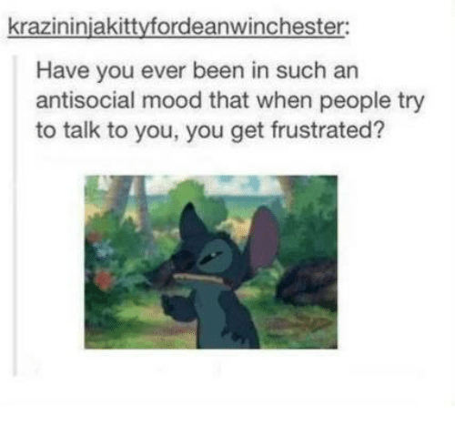 Memes, Mood, and Antisocial: krazininiakittyfordeanwinchester:  Have you ever been in such an  antisocial mood that when people try  to talk to you, you get frustrated?