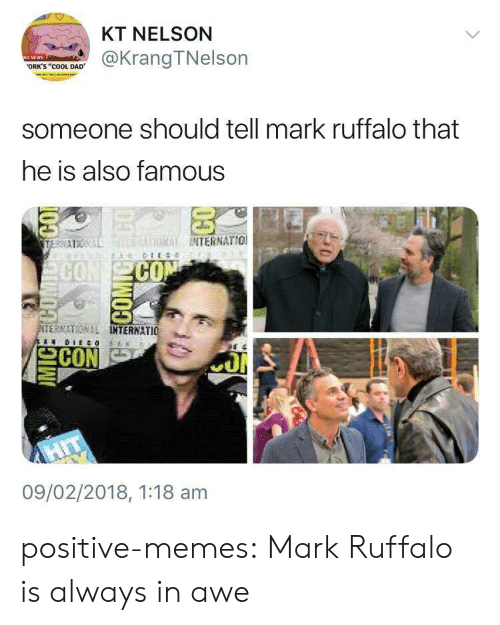 """Cool Dad: KT NELSON  @KrangTNelson  ORK'S """"COOL DAD  someone should tell mark ruffalo that  he is also famous  THRİİ INTERNATIO!  CO  ERMATIONAL  TERNATIO 뇨  09/02/2018, 1:18 am positive-memes: Mark Ruffalo is always in awe"""
