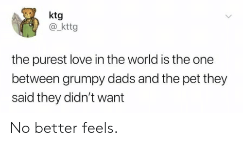 grumpy: ktg  @_kttg  the purest love in the world is the one  between grumpy dads and the pet they  said they didn't want No better feels.