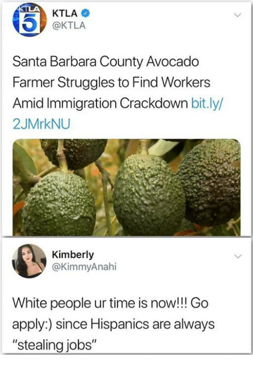 "Ktla: KTLA  @KTLA  Santa Barbara County Avocado  Farmer Struggles to Find Workers  id Immigration Crackdown bit.ly/  2JMrkNU  Kimberly  @KimmyAnahi  White people ur time is now!!! Go  apply:) since Hispanics are always  ""stealing jobs"""