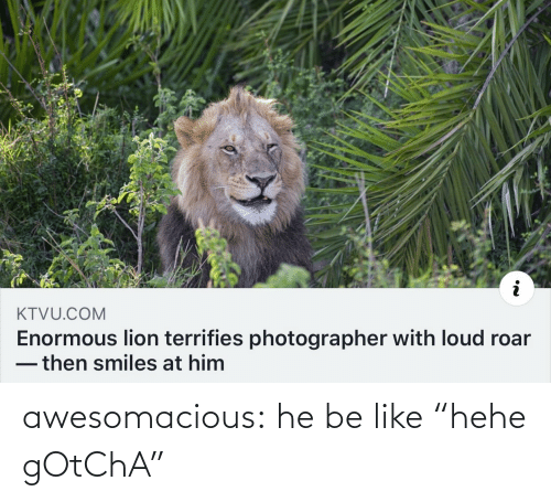 "loud: KTVU.COM  Enormous lion terrifies photographer with loud roar  -then smiles at him awesomacious:  he be like ""hehe gOtChA"""